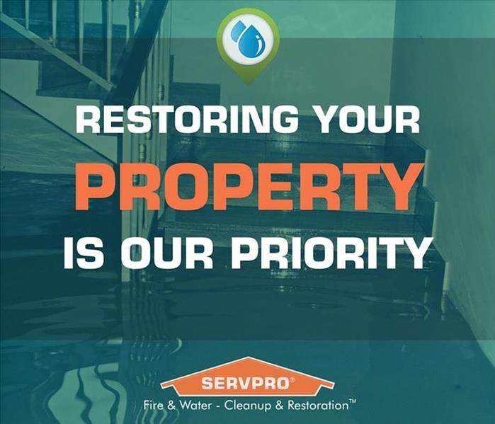 Cleaning Cleaning Myths and The Facts From Your Local SERVPRO of Huron & East Seneca Counties