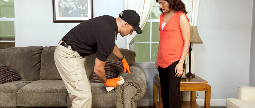 Tiffin, OH carpet upholstery cleaning